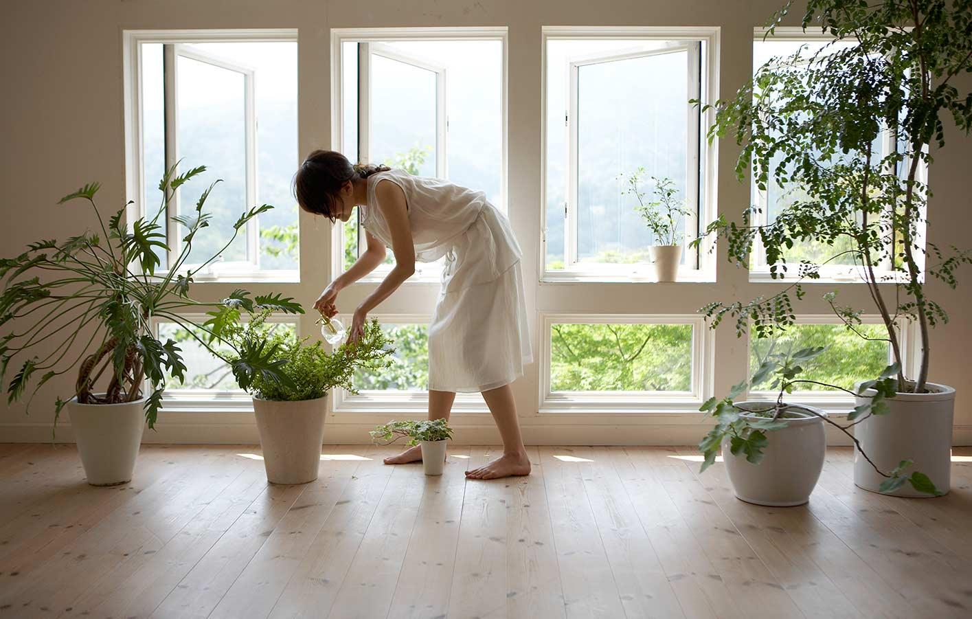Sweet Home 3d Fußboden Farbe ~ Kork korkboden parkett vinyl laminat backnang schwäbisch hall